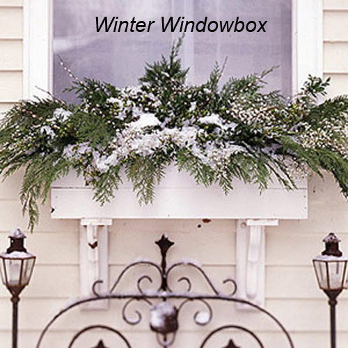 578-Windowbox-Planter-F