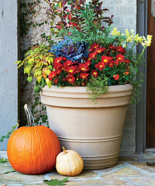 65-Fall-Colorful-Garden