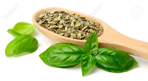 856-Dried-Basil-From-Th