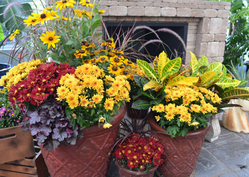 93-Fall-Mums-Planters