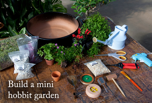 1103-Build-A-Mini-Hobbit-Garden-Out-Of-Pots