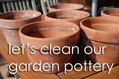 1109-Lets-Clean-Our-Garden-Pottery