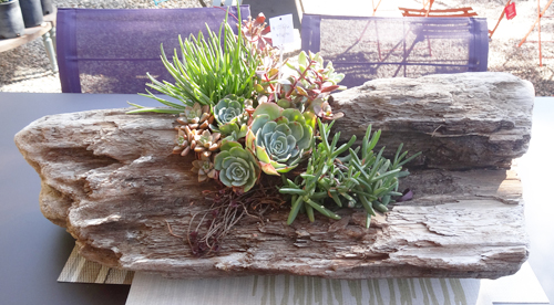 1292-Driftwood-Garden-Pot-Container-Planter