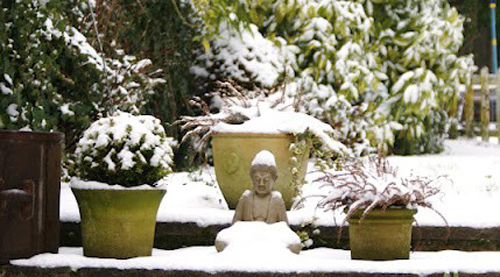 Winter Garden Pottery