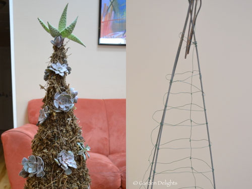 1454-Potted-Succulent-Christmas-Tree
