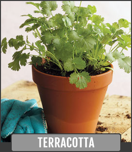 Despite Modern Advancements, Terracotta Pottery Still Makes For Some Of The  Best Garden Planters A Person Can Use. This Is In Part Because Clay Pottery  Can ...