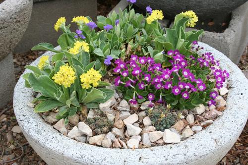 how to make hypertufa pots - Google Search | Hypertufa ... |Rock Garden With Pots