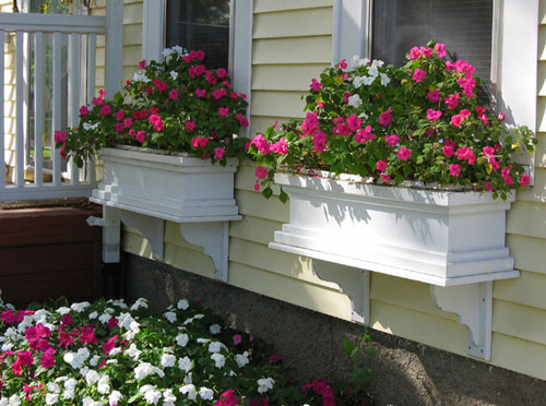 3734-Window-Box-Garden-P
