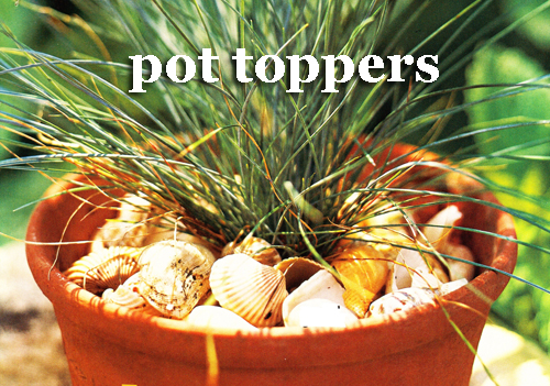 439-Pot-Toppers