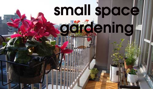 819-Small-Space-Gardening
