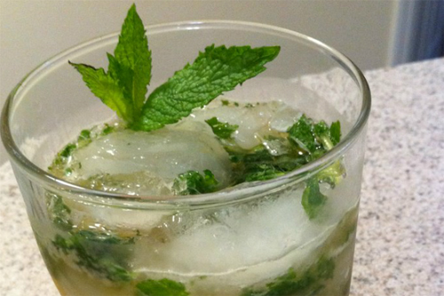 8461-Mint-In-Drinks
