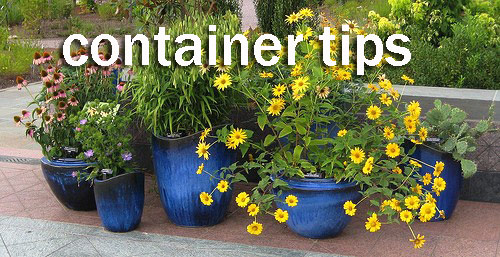 8932-Container-Tips