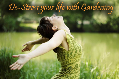 468-Destress-Your-Life-With-Gardening