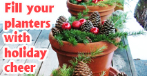 479-Fill-Your-Planters-With-Cheer.