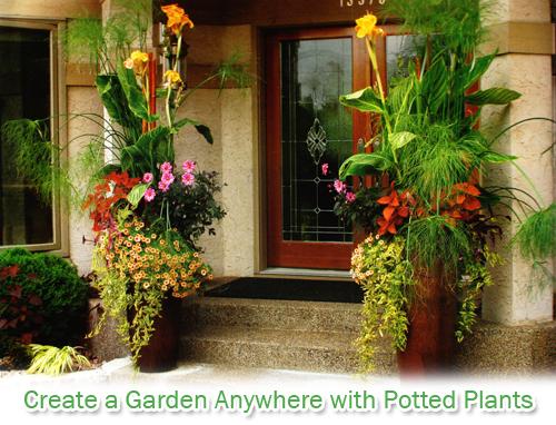 Home The Pottery Post Blog Arizona Pottery Terracotta Pots
