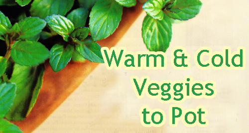 16026---Warm- -Cold-Veggies-To-Plant-In-Garden-Pots-From-Arizona-Pottery