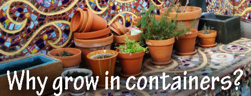 16051-Why-Grow-In-Garden-Containers-Arizona-Pottery