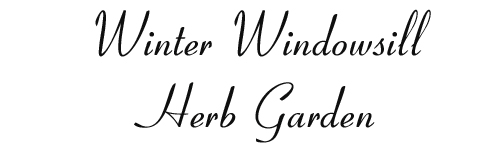 16124 Winter-Windowsill-Herb-Garden-Arizona-Pottery