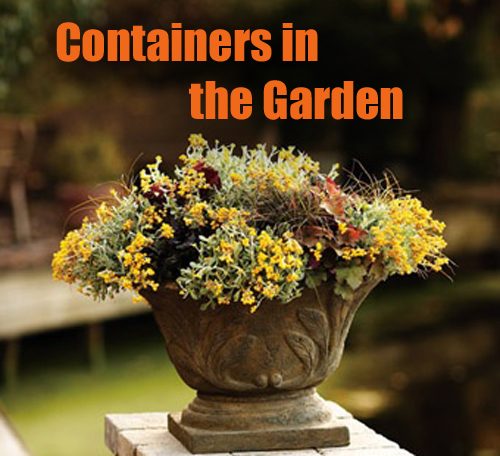 16131-Container-In-The-Garden-Arizona-Pottery