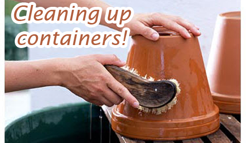 114-Cleaning-Up-Container-Title