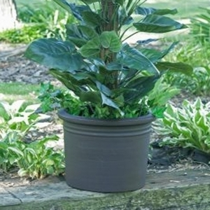 Poly Resin Rolled Rim Cylinder - Huge Lightweight Cylinder Garden Pottery & Planters | Poly Resin Made in America | 32 Colors | Ships Nationwide | Durable & Decorative