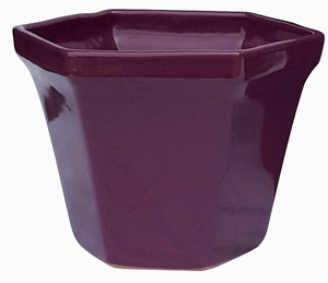 Hex Pot Purple