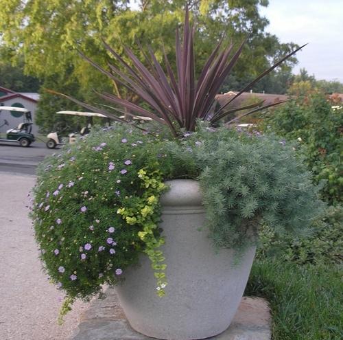 Sandstone Garden Bowls & Planters